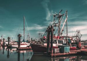 a-propos-histoire-expertise-nicolas-castagnet-mecanicien-bateau-meca-marine-33